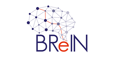 BReIN Executive Board Meeting Q4