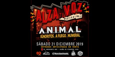 FESTIVAL  ALZA TU VOZ  2019  - VOL.2 entradas