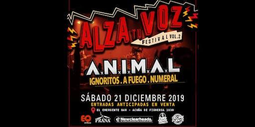 FESTIVAL  ALZA TU VOZ  2019  - VOL.2