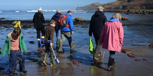 Runswick Bay Fossil Hunting Trip, 28-May-2020