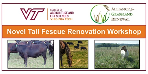 Virginia Novel Tall Fescue Renovation Workshop 2020