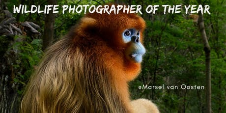 Wildlife Photographer of the Year biglietti