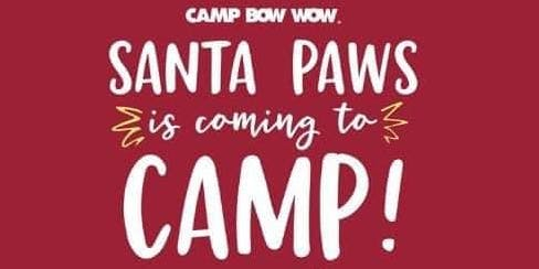 Camp Bow Wow Avondale's Howl-iday Open House