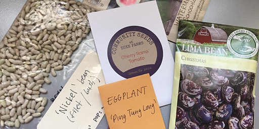 National Seed Swap Day 2020