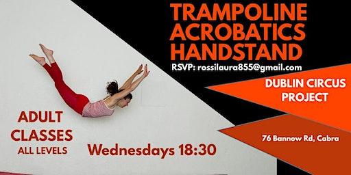 Trampoline Acrobatics Handstands Classes