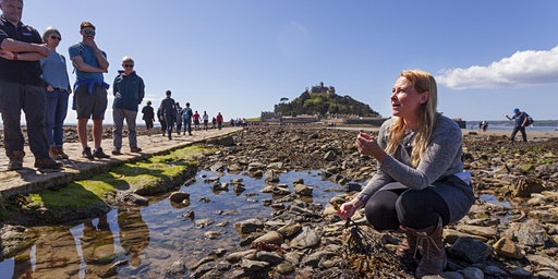 Foraging & Picnic on St Michael's Mount with Emma Gunn