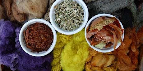 Cyflwyniad i Liwio Naturiol | Introduction to Natural Dyeing tickets