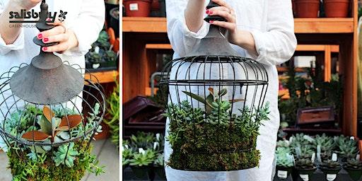 Succulent Birdcage