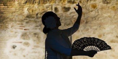 Learn Flamenco!