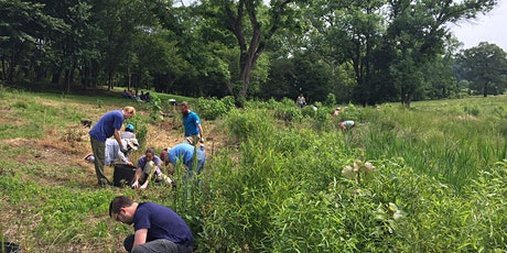 Volunteer: Stream Restoration & Invasive Removal Thurs, March 19 tickets