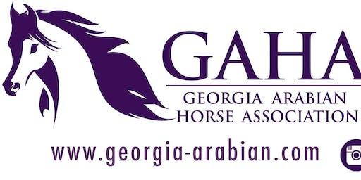 2020 GAHA Meeting & Awards Luncheon