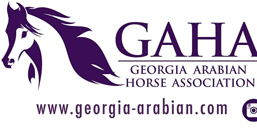 2020 GAHA Meeting & Awards Luncheon