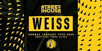 Weiss at TreeHouse Sunday Shady Park