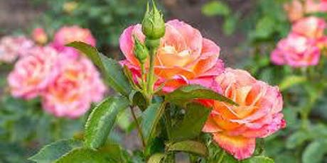 Rose Garden : A Women's Transformation Day tickets