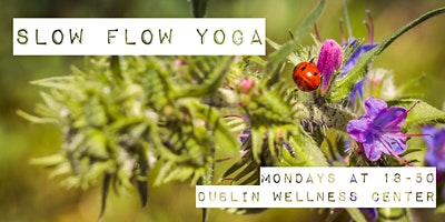 Slow Flow & Restorative Yoga - Dublin City Center