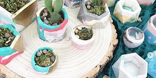 Jesmonite Plant Pots at Harbour House