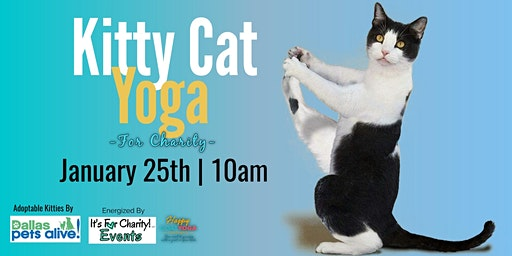 Kitty Cat Yoga-For Charity at Sports Garden DFW