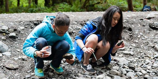 Spring Family Weekend in Olympic National Park
