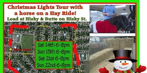 Christmas Lights Tour with a Horse on a Hay Ride!