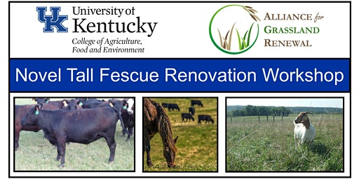 Kentucky Novel Tall Fescue Renovation Workshop