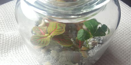 Closed Terrarium Workshop - Plant Therapy tickets
