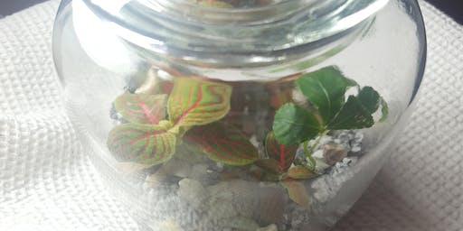 Closed Terrarium Workshop - Plant Therapy