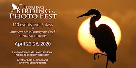 2020 Florida's Birding & Photo Fest tickets