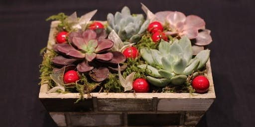 Winter Succulent Planters with Port Moody Flowers