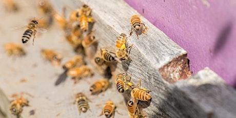 2020 Integrated Pest Management Workshop tickets