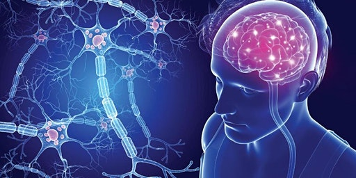 Multiple Sclerosis: Understanding and Management