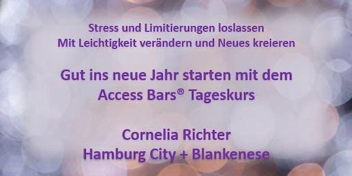 ACCESS BARS ® TAGESKURS HAMBURG 26.01.2020