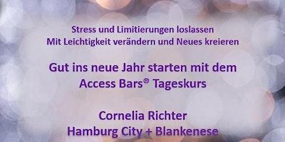 ACCESS BARS ® TAGESKURS HAMBURG 23.02.2020
