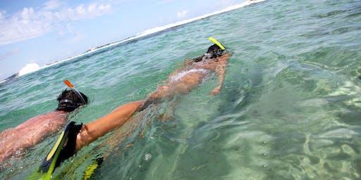 Snorkelling at Gordons Bay INTERMEDIATE