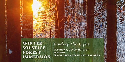Winter Solstice Forest Immersion