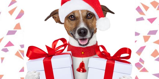 Doggie's CHRISTMAS PARTY at MISHKA DOG BOUTIQUE