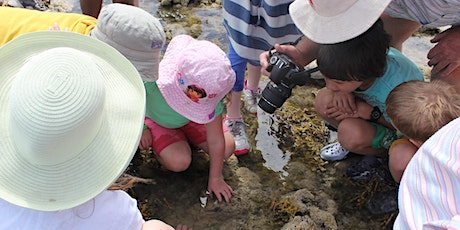 Reef Ramble - School Holiday Program - 27 December 2019 tickets