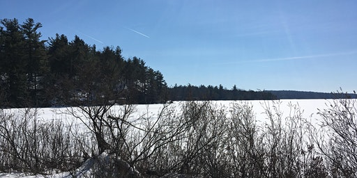 Winter Hike and Draw: Lake Awosting