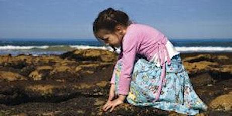 Junior Rangers Rockpool Ramble - Mushroom Reef Marine Sanctuary tickets