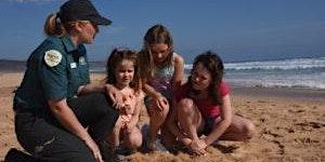 Junior Rangers Beach Treasure Hunt -  Mushroom Reef