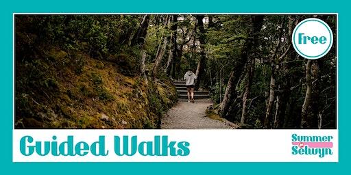 Devils Punchbowl Walking Track