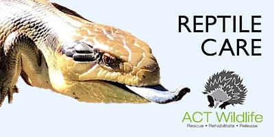 Reptile Care - ACT Wildlife