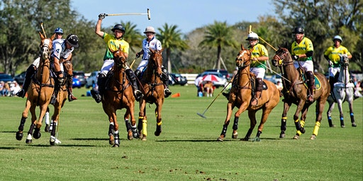 Sunday Polo at the Sarasota Polo Club