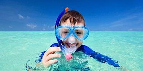 Snorkelling at Clovelly BEGINNER tickets