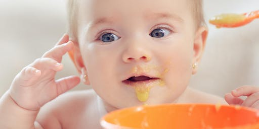 Starting Solid Foods