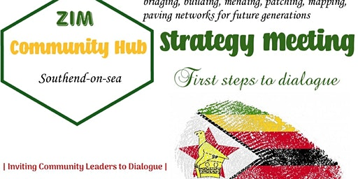 Strategy Consultation Initiative Meeting
