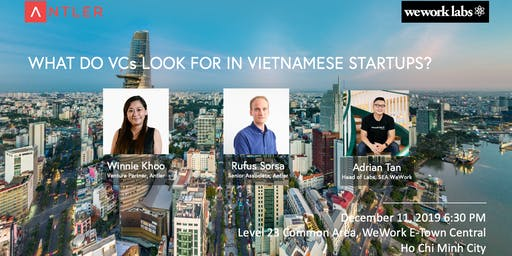 What do VCs look for in Vietnamese startups?