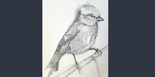 Birds In Pencil And Watercolour Paint (Adult Course)