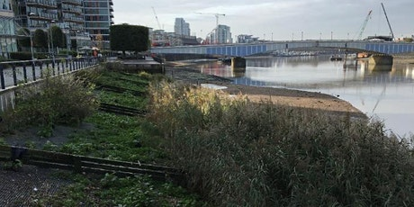 Battersea clean-up and monitoring training tickets