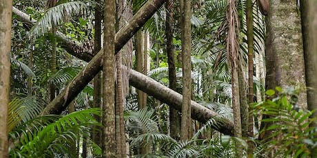 Lianas, Tropical Forests and the Global Carbon Cycle tickets