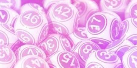Bingo and Bubbles